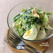 ボリューム満点!「春キャベツと卵」のごちそうサラダ