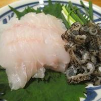 【旨魚料理】ムラソイの刺身