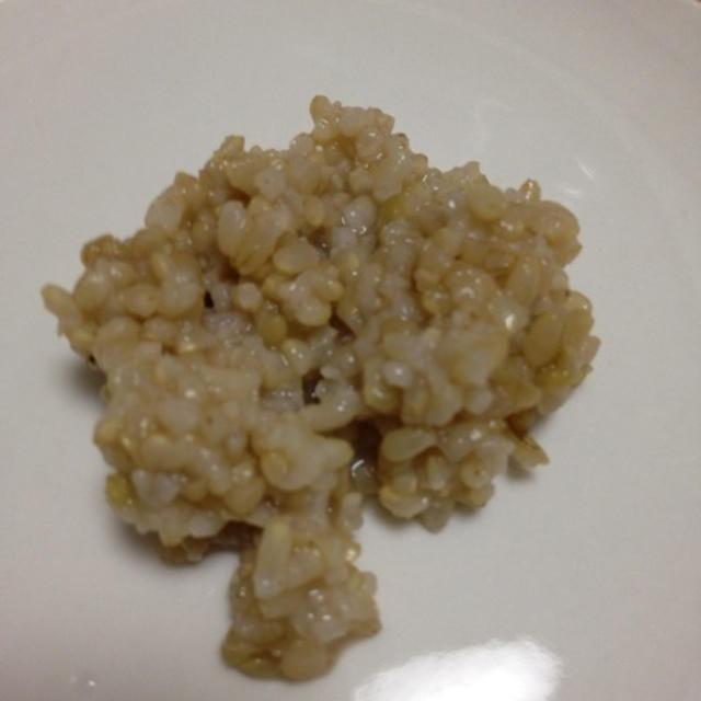 玄米と麦芽の米あめ