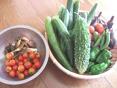 家庭菜園の祭り。山形のだし