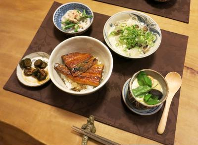 「土用の丑の日イブ」に鰻丼の晩ご飯 と 病気の金魚さん♪