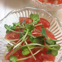 のっけてジュレ柚子こしょうポン酢で長芋とトマトの簡単前菜