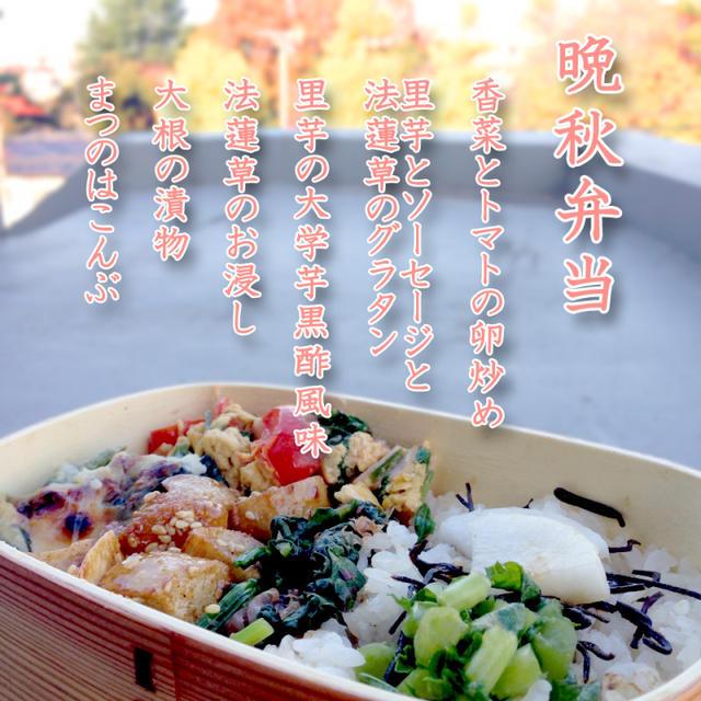 弁当File Vol.225 2014/11/28