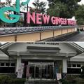 ◈NEW GINGER MUSEUM ◈