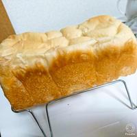 乃がみ風食パン