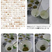 スパイス大使さん向けスパイスセミナーin東京2013 参加レポート~☆ -3-