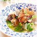 あさりとキャベツの白出汁スープ by mariaさん