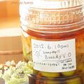 2012年の手作り梅酒はブランデーで♡ by Ayaccoさん