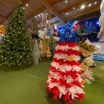 世界一大きいクリスマスショップ