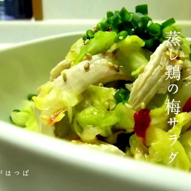 ≪春キャベツと蒸し鶏の梅サラダ≫