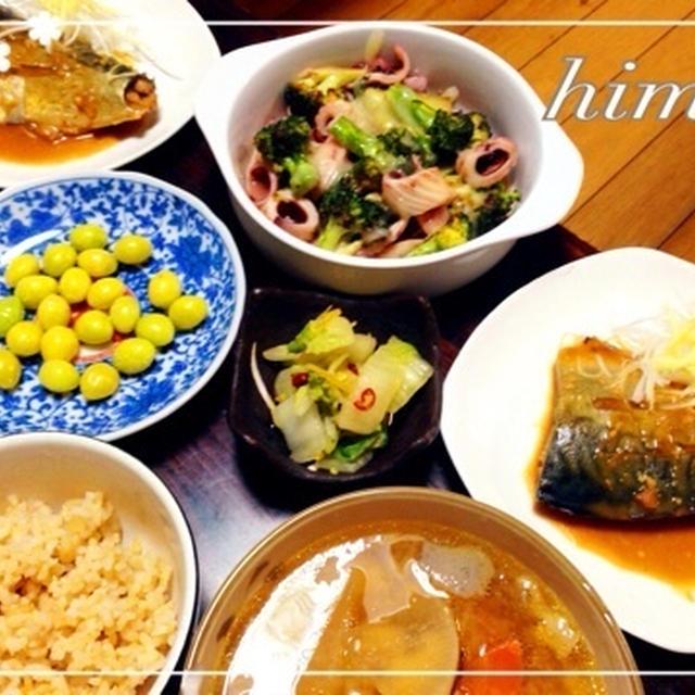 ひきこもり 〜 鯖の味噌煮 イカとブロッコリーのチーズ焼き 〜