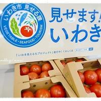 「いわき市のトマトでかな姐さんとトマトクッキング」に参加。