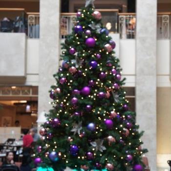 【ホテルのクリスマスツリー♪】