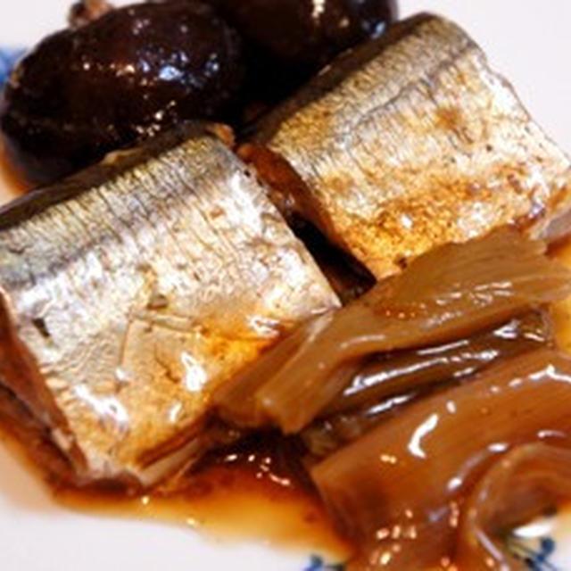 とろける秋刀魚ととろとろ葱の煮物で手酌酒で酔いどれて、寝過ごして……