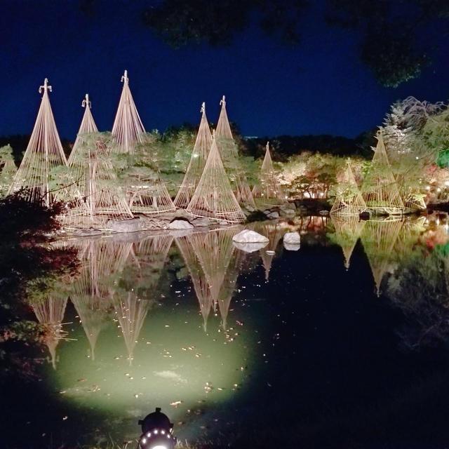 白鳥庭園 * 紅葉ライトアップ * 名古屋市熱田区(地下鉄 日比野駅/ 西高蔵駅 )