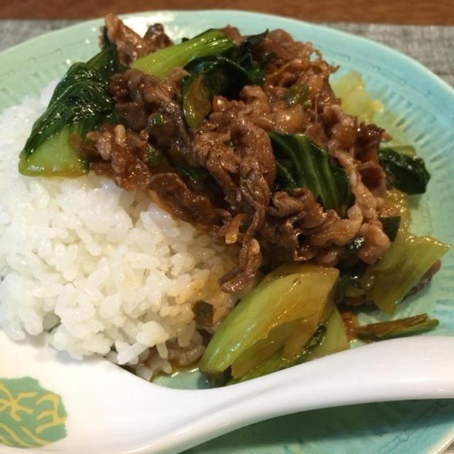 青梗菜と牛肉のたっぷりネギ丼