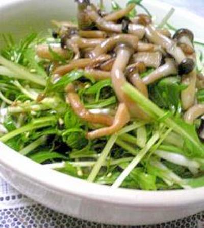 シャキシャキ水菜とごま油風味しめじのサラダ