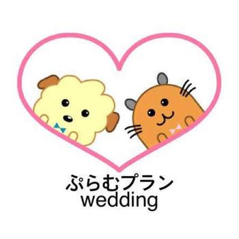 こちらのドレスがレンタルご希望とても多いです10000円だからこそ、見つけてくださる花嫁...