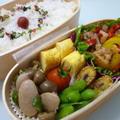 6月21日 塩麹バジルチキン弁当 by カオリさん