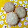 プレーン・ビスケット【Plain Biscuits】