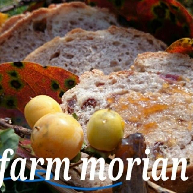 農園レシピとカボチャ