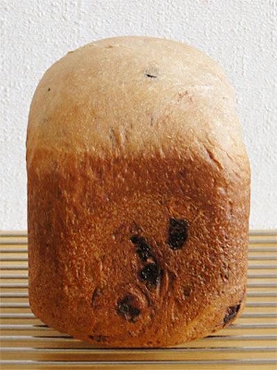 GOPANのチョコチップミルク食パン
