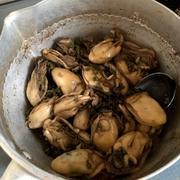 【ぷりっぷり!の牡蠣飯】と牡蠣フライで牡蠣三昧晩ごはん*
