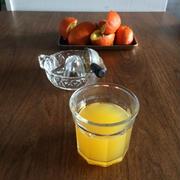 【常備ダレ】橙ポン酢で新物ワカメと新玉ねぎのサラダ