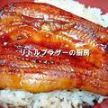 冷凍鰻の蒲焼き 解凍方法&美味しい食べ方 (レシピ)