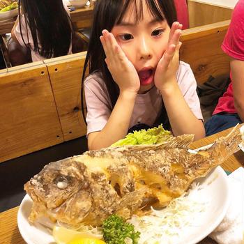 魚釣りに来ました〜!!