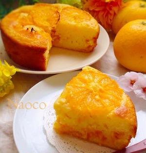 フレッシュみかんのヨーグルトケーキ