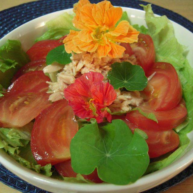 野菜ハーブサラダ
