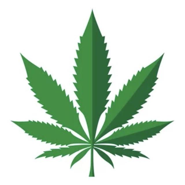 ニューヨークの大麻事情(マリファナ!)