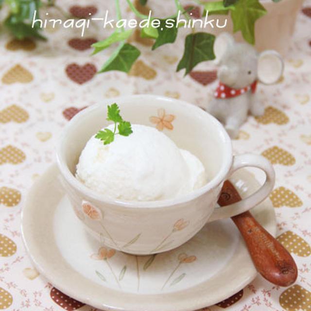 卵不使用*簡単!混ぜるだけ!濃厚なめらかバニラアイス