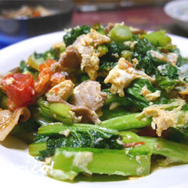 彩り、栄養よし!山東菜と豚バラの卵とじ炒め