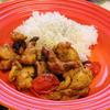 鶏肉とレーズンのチキン煮