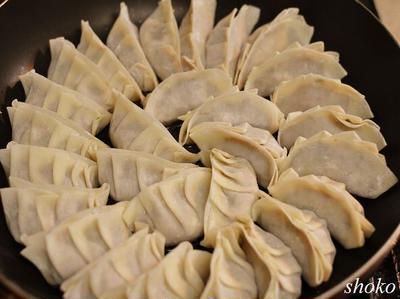 ガックリ!羽根がチーズ餃子と、タコと白菜のサラダの晩御飯