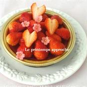 トイプーだいず☆春色いちごのバースデーケーキ