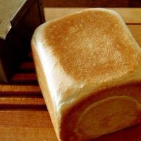 微妙な正角食パン&おちびさん・・にゃ♪
