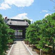 京都の夏♪
