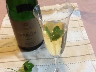 ワインのアルコール度数と種類|高い/低い/スパー …