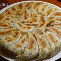 野菜たっぷり、減塩白菜餃子♡ by haru-hanaさん