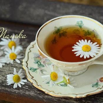 甘い物が止められない方に!過食を防げる、砂糖の75倍の甘さを持つヘルシー茶