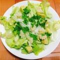 【ヘルシー】アボガドと大根とわさび菜の春サラダ