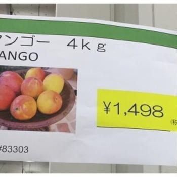 うぅ〜〜 マンゴー
