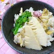 筍ごはんレシピ集&茹で方&保存方法