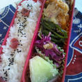 レシピ鮭ハンバーグ弁当