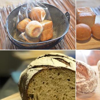8月12日(水) 『天然酵母パンに挑戦したい』方のワークショップ 8名さま募集