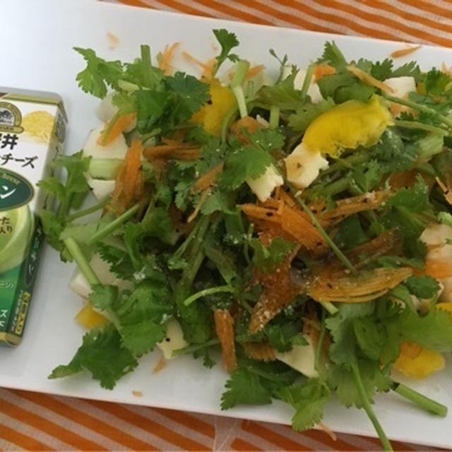 パクチー女子(*^_^*)小岩井オードブルチーズオニオンでパクチーサラダ