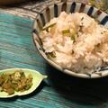 recipe▶︎夏バテ対策!葱飯&蕪の葉のふりかけ/殻付き牡蠣に苦戦